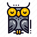 wisdom, bird, education, owl