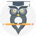 education, graduation, owl, pen, school icon
