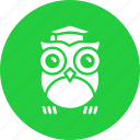 class, knowledge, learning, owl, school, smart, teacher icon