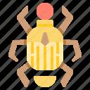 bug, egypt, egyptian, insect, scarab