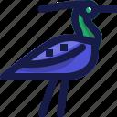 animal, bird, culture, egypt, egyptian, language, wild icon
