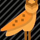 ancient, animal, bird, egypt, nature, owl, predator icon