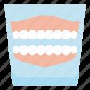 care, dental, denture, elderly, teeth icon