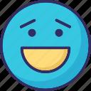 adoring, emoticons, happy, laughing icon