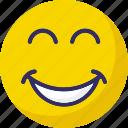 baffled emoticon, emoticons, happy, smiley icon