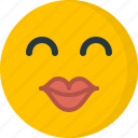 emoticons, face, happy, kiss, love, smile, valentines icon