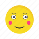 blush, emoji, emoticon, face icon