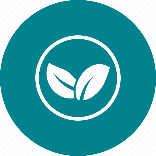 Ecology, energy, environment, nature, organic, power, technology icon - Download on Iconfinder