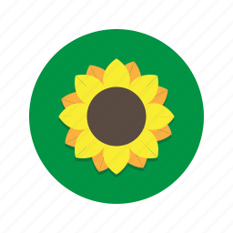 flower, flowers, plant, sunflower, sunflowers icon