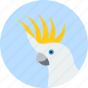 animal, beak, bird, cockatoo, exotic, tropical, wild icon