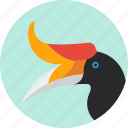 animal, beak, bird, exotic, hornbill, tropical, wild icon