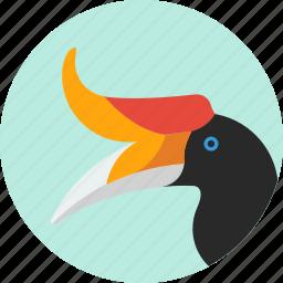 animal, beak, bird, exotic, hornbill, tropical, wild icon
