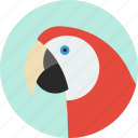 animal, beak, bird, exotic, macaw, tropical, wild icon