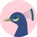 animal, beak, bird, exotic, peacock, tropical, wild icon