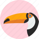 animal, beak, bird, exotic, toucan, tropical, wild icon