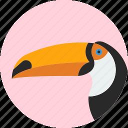 animal, beak, bird, exotic, toucan, tropical, wild icon