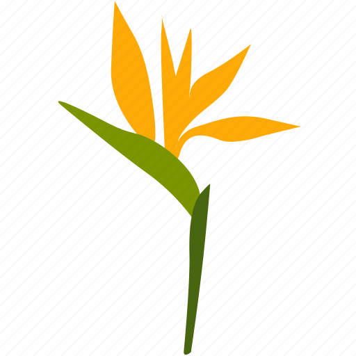 exotic, flower, herb, plant, tropical, yellow icon