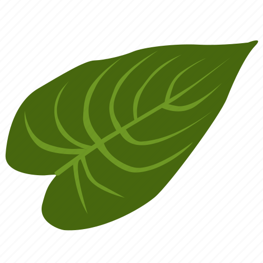 exotic, herb, leave, plant, tropical icon