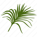 green, leafes, leave, palm, tree, tropical icon