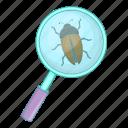 glass, magnifying, zoom, bug