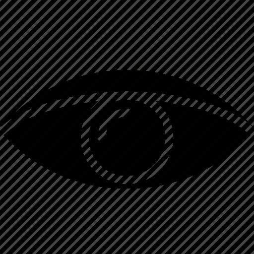 Eye, human, vision, face icon