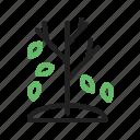 autumn, color, falling, leaf, leaves, nature, tree icon