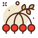 berries, cherry, fruits icon