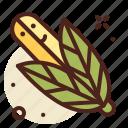 agriculture, corn, garden, vegetables
