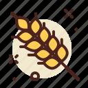 agriculture, autumn, garden, grain, season, weather icon