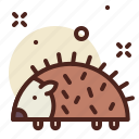 animal, garden, hedgehog icon
