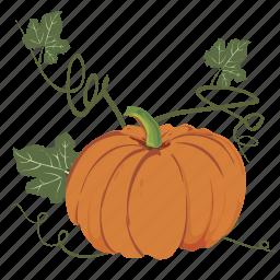 autumn, cartoon, decoration, fall, owl icon