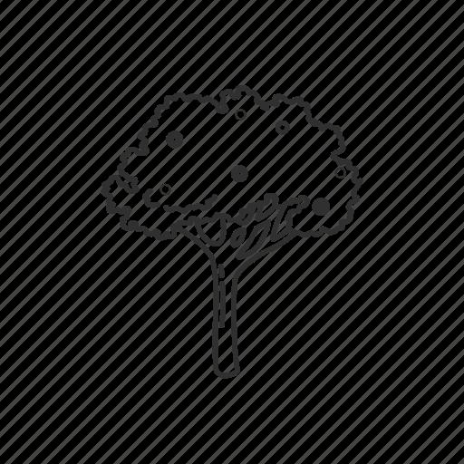 apple, apple tree, forest, fruit, nature, plant, tree icon