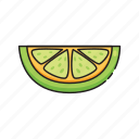 food, fruit, healthy, lemon, lime, vegetables icon