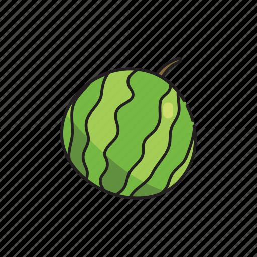 food, fruit, green, healthy, watermelon icon
