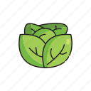 food, healthy, leaves, lettuce, spinach, vegetables icon