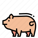 animals, farm, pig, pork icon