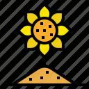 farm, flower, garden, nature, sunflower
