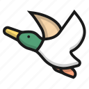 bird, duck, farm, fly, pultry icon
