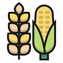 agriculture, corn, farm, rice icon