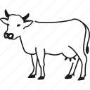 animal, cow, farm, farm animal icon
