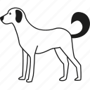 animal, dog, farm, pet icon