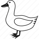 animal, bird, duck, farm icon