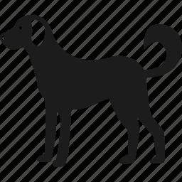 animal, dog, farm, pet icon
