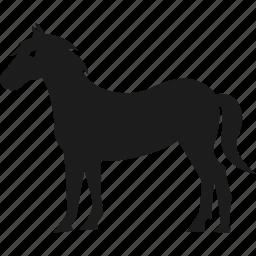 animal, farm, farm animal, horse icon