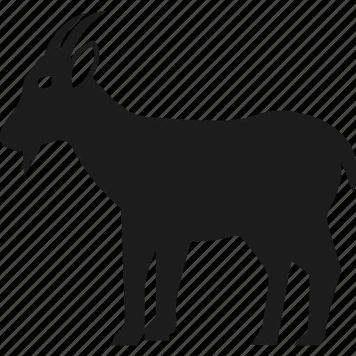 animal, farm, farm animal, goat icon