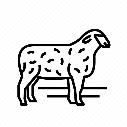 animal, farm, pet, sheep, wool icon