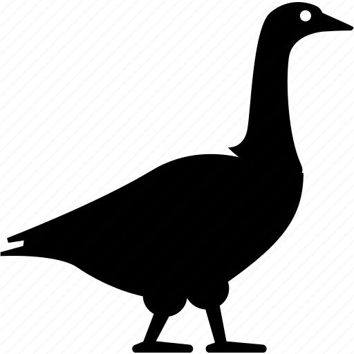 Duck, geese, goose, swan icon - Download on Iconfinder