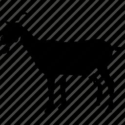 agriculture, animal, farm, goat icon