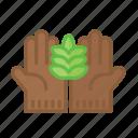 agriculture, farm, farming, garden, gardening, nature