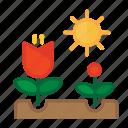 blossom, farming, flower, garden, gardening, growth, plant